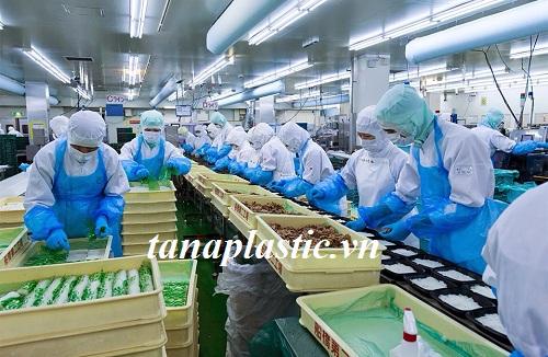 thùng nhựa tại nhà máy chế biến