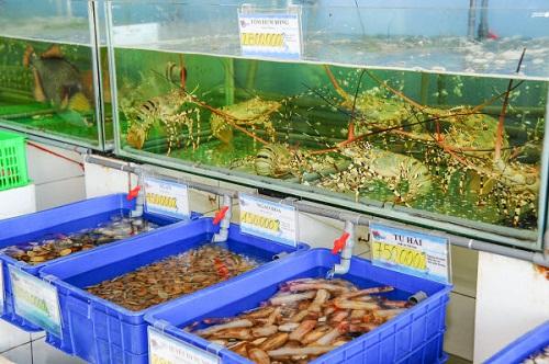thùng nhựa đựng hải sản